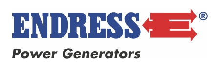 Stromerzeuger Endress Power Generators